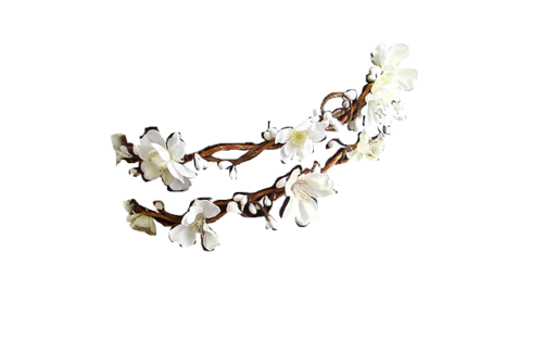 The gallery for --> White Flower Crown Png