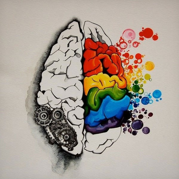 Seus pensamentos realmente mudam seu cérebro.