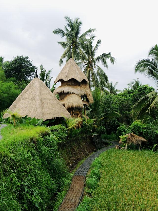 Accommodation in Ubud, Airbnb in Ubud, Airbnb in Bali