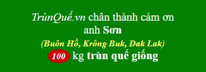 Trùn quế Buôn Hồ
