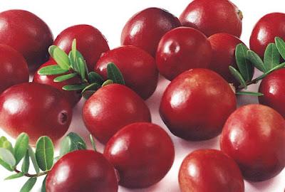 優質分享: 蔓越莓的好處