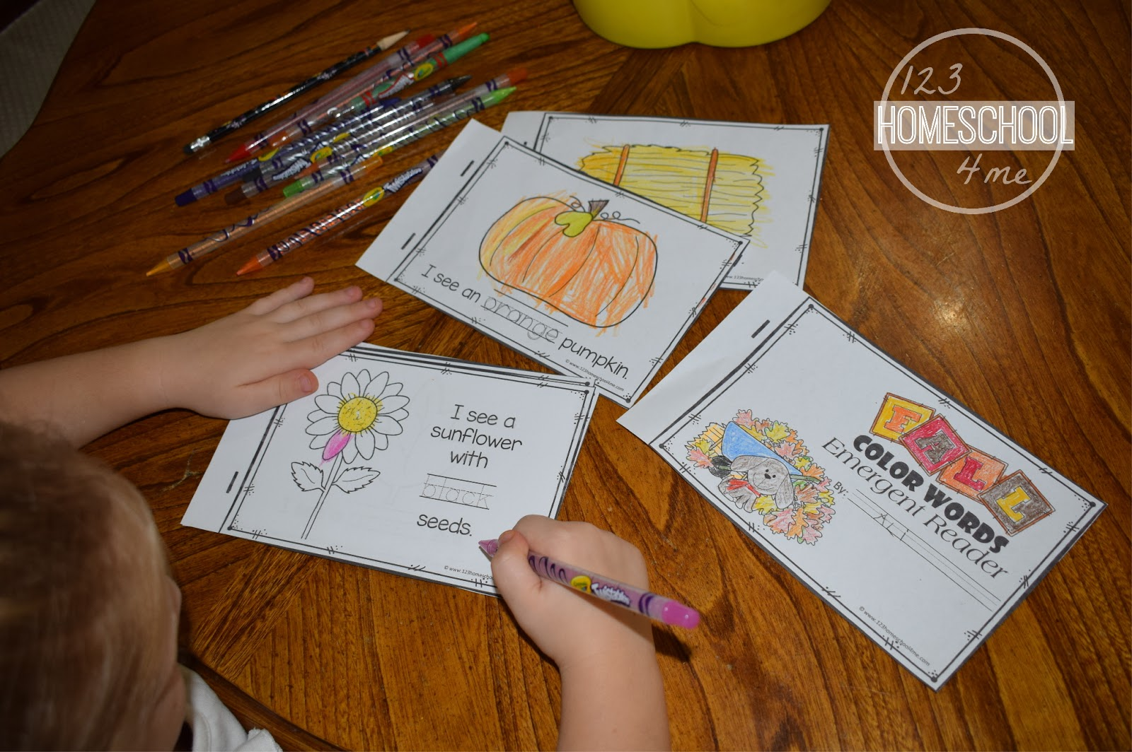 Free Fall Color Words Emergent Reader