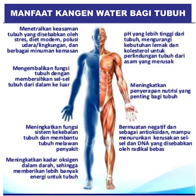Agen Kangen Water Bogor