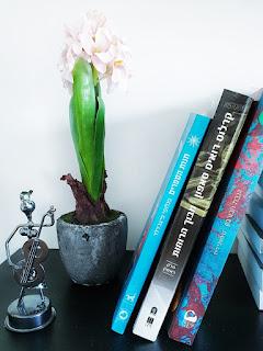 קריאה המלצות ספרים חדשים
