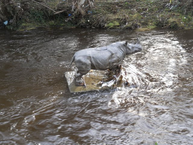 Walk the River Dodder in Dublin - rhino statue