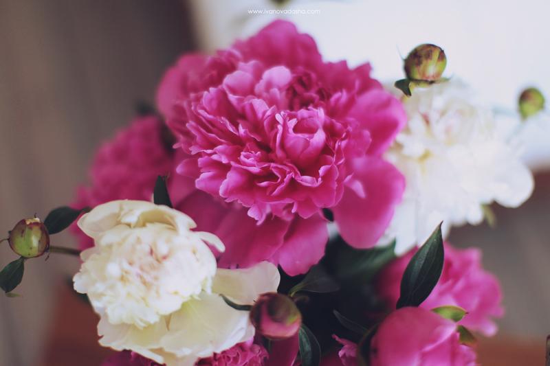 свадебная фотосъемка,свадьба в калуге,фотограф,свадебная фотосъемка в москве,фотограф даша иванова,идеи для свадьбы,образы невесты,фотограф москва,фотосессия невесты,будуарная фотосъемка,пленочная фотография,сборы невесты,файнарт,fine art,нежные сборы невесты с пионами,романтичные сборы невесты,будуарная фотосъемка для девушки,девушка с пионами, сборы в отеле,сборы невесты в отеле,сборы невесты в халате,девушка в махровом халате,Hilton Garden Inn Kaluga,лена на пп,иванова даша,пионы