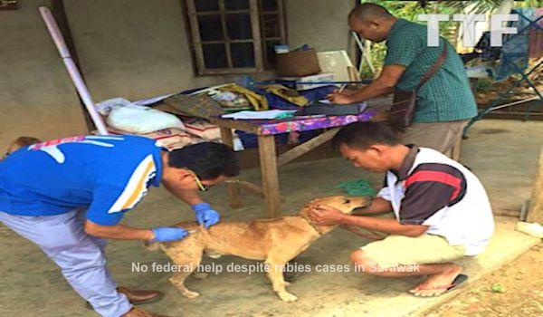 No federal help despite rabies cases in Sarawak