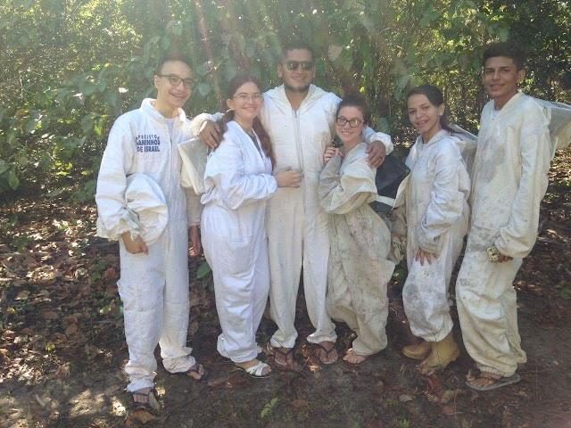 Projeto Colmeia   Estudantes constroem apiário na localidade de Pernambuquinho