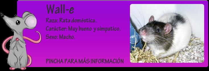 http://almaexoticos.blogspot.com.es/2014/07/wall-e-comprada-para-hacer-un-corto-y.html