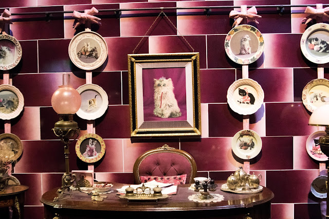 Harry Potter, London, Studio Tour, Warner Bros. Studio Tour, Umbridge Office, Cats, Cat wall