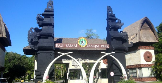 Holiday Tips Bali Safari-Marine Park - Best Bali Zoo Park Packages