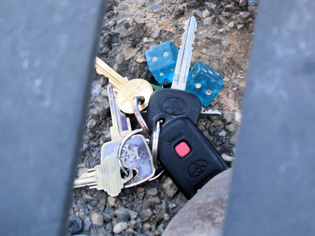 Car Keys and Dice Abandoned Under a Tree in Las Vegas