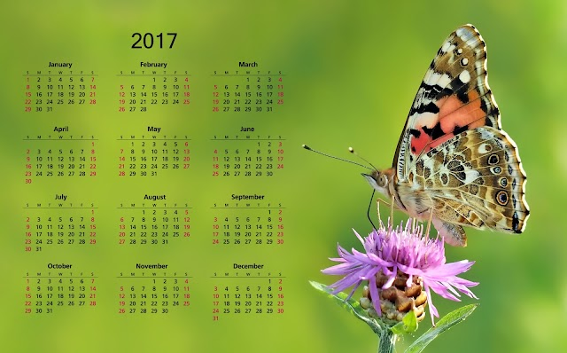 2017 Calendar Wallpaper Free Download