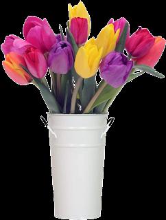 Vaso de tulipas coloridas