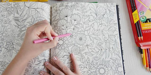 resenha livro de colorir