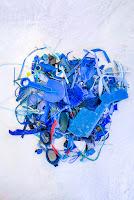 Blue plastic %25C2%25A9XabierAldazabal Panthalassa