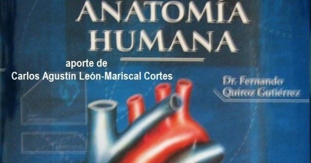 Anatomia Quiroz Pdf