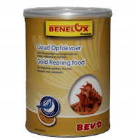 GOLD REARING FOOD BENELUX