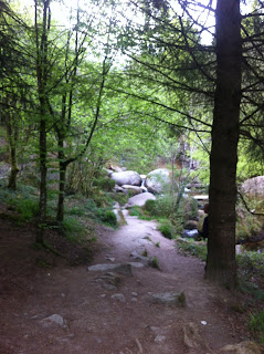 La Mare aux Sangliers - Huelgoat forest, Brittany