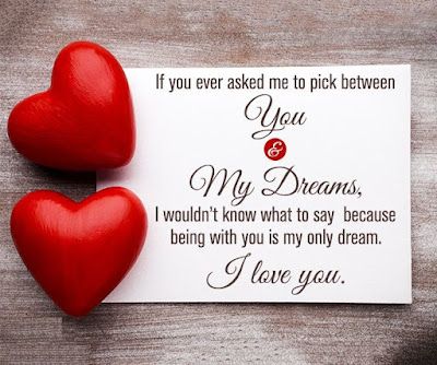 Funny-valentines-day-quotes-messages-ideas-for-him-with-images-4