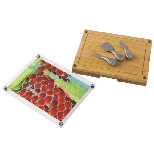 http://www.zazzle.com/adaptive_reuse_2_rectangular_cheeseboard-256073545954470362