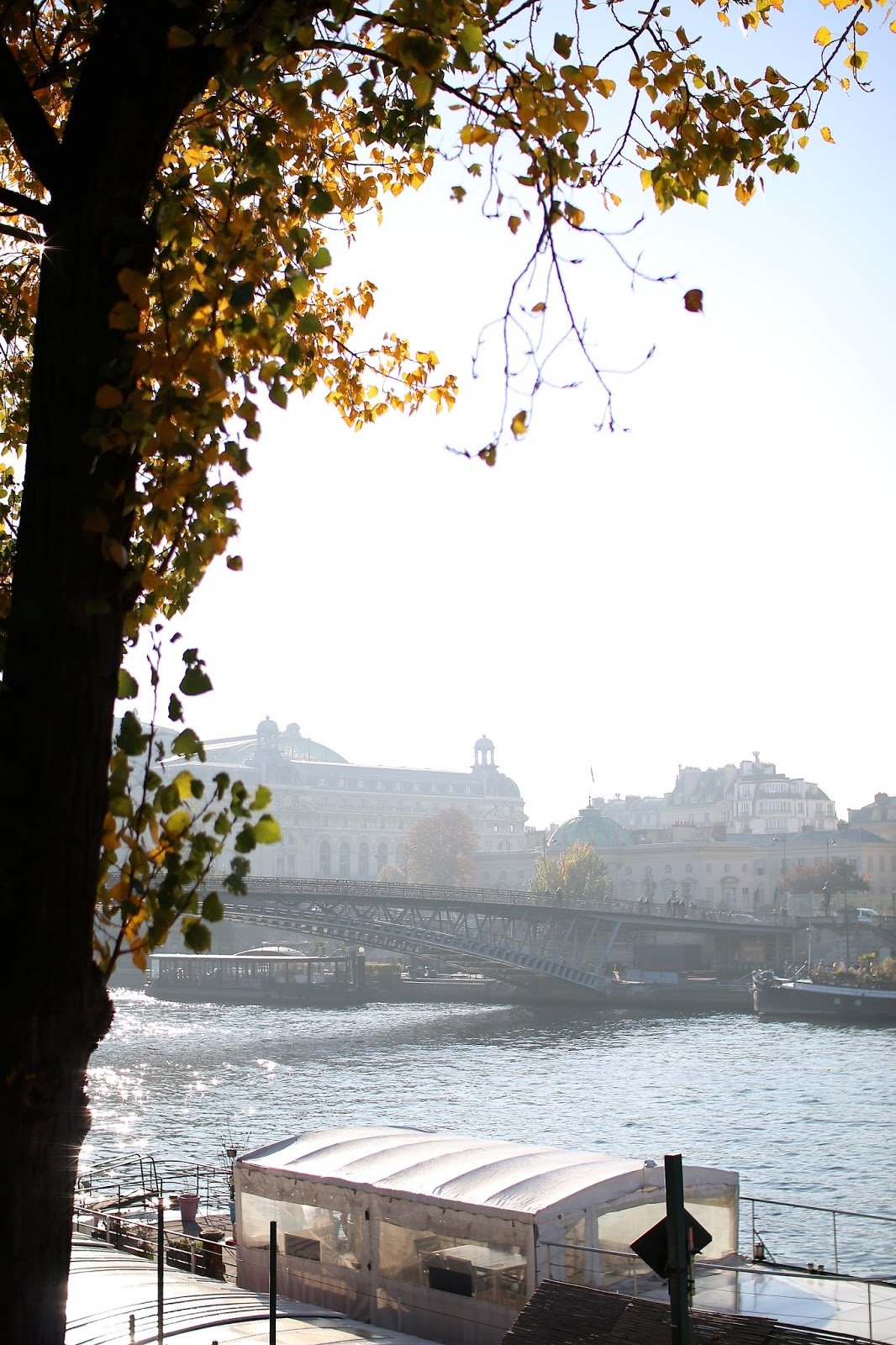picture perfect view of the water in paris during the fall