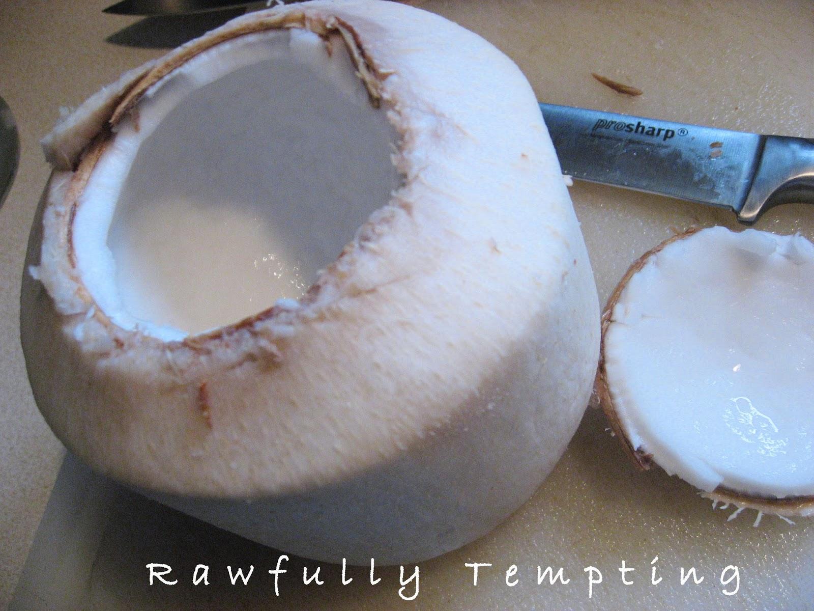 Classic Vanilla Coconut Flour Cake