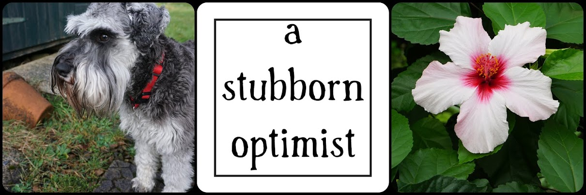 A Stubborn Optimist ~ ecotherapy blog