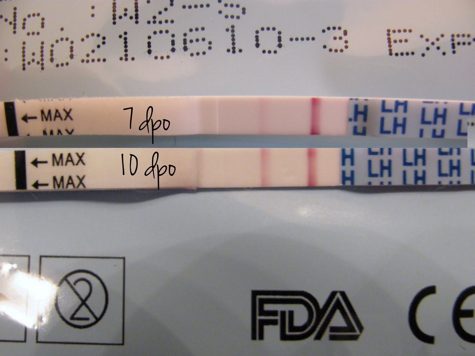 Positive Opk When Will I Ovulate