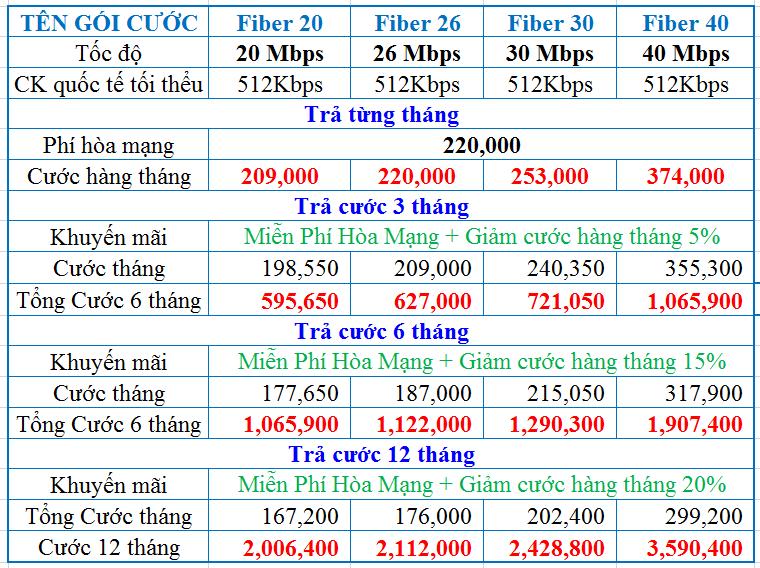 Lắp đặt Internet cáp quang VNPT - Tp Hồ Chí Minh