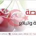 عائشة وبائع الخضار و الفاكهة