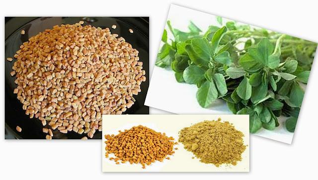 benefits of fenugreek seeds methi