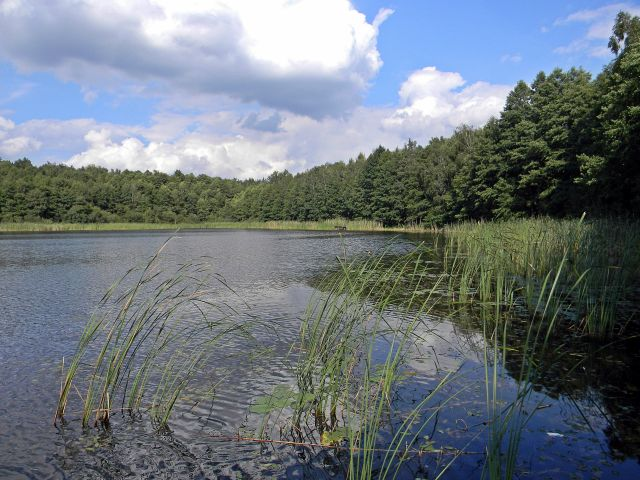 Jezioro Liny