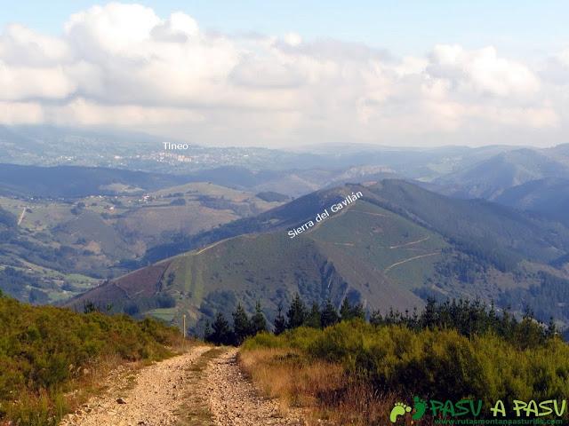Vista de Tineo y la Sierra del Gavilán