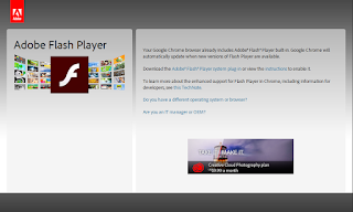 Your Google Chrome browser already includes Adobe® Flash® Player