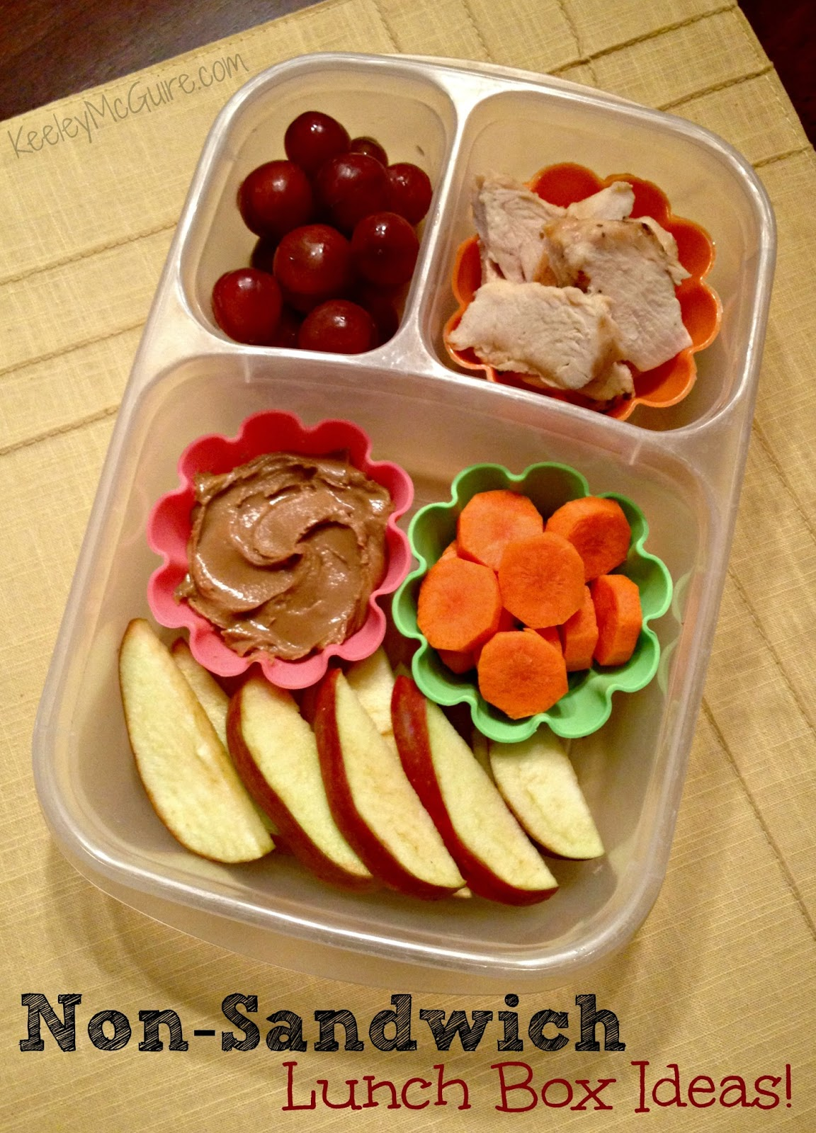 15 No Sandwich Lunch Ideas To Help Give Your Child Variety In Their Lunches Make a homemade taco lunch kit for your child. You use tortilla chips, so it is like mini crunchy tacos or even nachos, packed with their favorite toppings.
