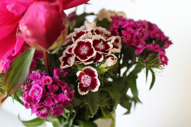 peonies and sweet william