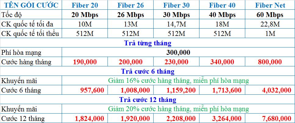 Lắp đặt cáp quang VNPT Quận 1