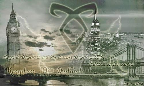 Kingdom Of Owland: Libros: 'Cazadores De Sombras