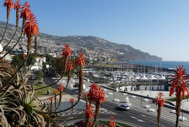 Blick auf Funchal, Madeira