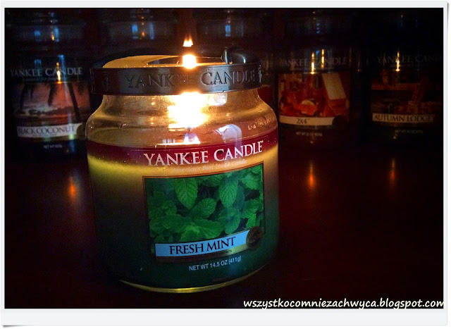 Yankee Candle, Fresh Mint