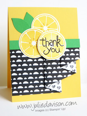 Stampin' Up! Last Chance Apple of my Eye Pleated Paper Card #stampinup 2016 Occasions Catalog Farewell Blog Hop www.juliedavison.com -- Video Tutorial Coming on 5/7/16