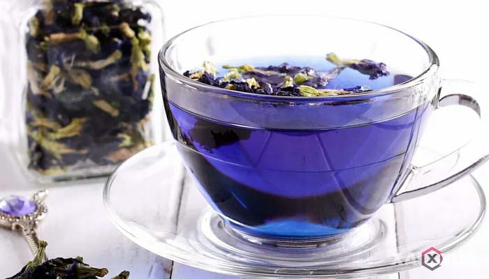 Minuman untuk diet alami dan cepat - Air teh bunga telang