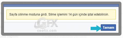 Sayfa silinme süreci-www.ceofix.com