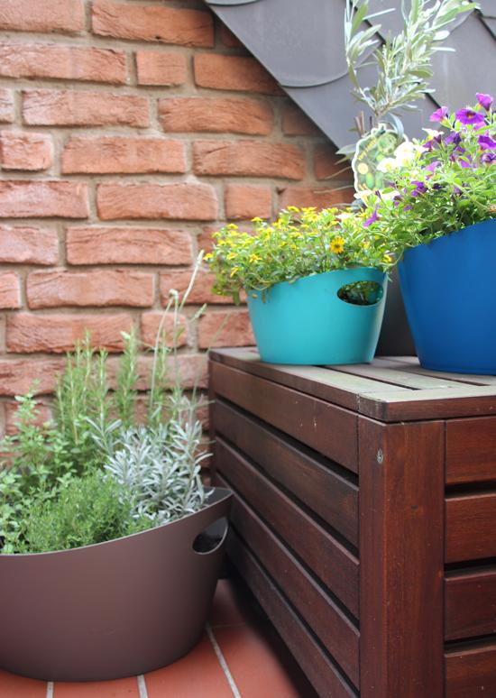 binedoro home urban gardening auf meinem balkon. Black Bedroom Furniture Sets. Home Design Ideas