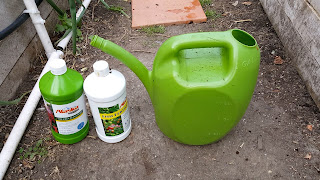 Add beneficial bacteria in your soil