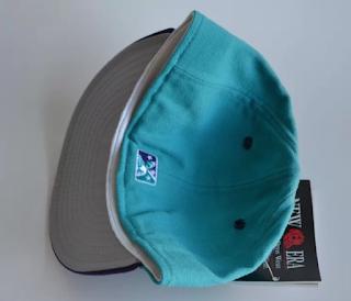 Charleston RiverDogs cap rear