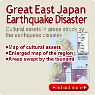 Great East Japan Earthquake Disaster