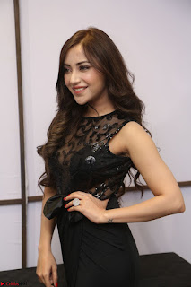 Angela Krislinzki in Transparent Black Gown at Rogue Movie Teaser Launch 1st March 2017 062.JPG