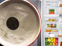 Sebelum Meninggalkan Rumah, Sebaiknya Taruh Koin di dalam Kulkas, Manfaatnya Sungguh Tak Disangka Sangka